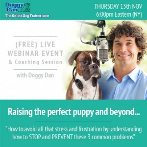 Puppy Training Webinar