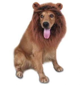 lion-mane-costume-for-dogs-dog-lion-wig-dark-brown
