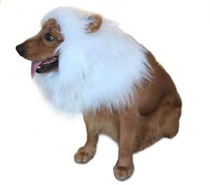 lion-mane-costume-for-dogs-dog-lion-wig