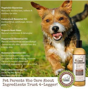 4 Legger Organic Dog Shampoo Essential Oils benefits for dogs with itchy skin
